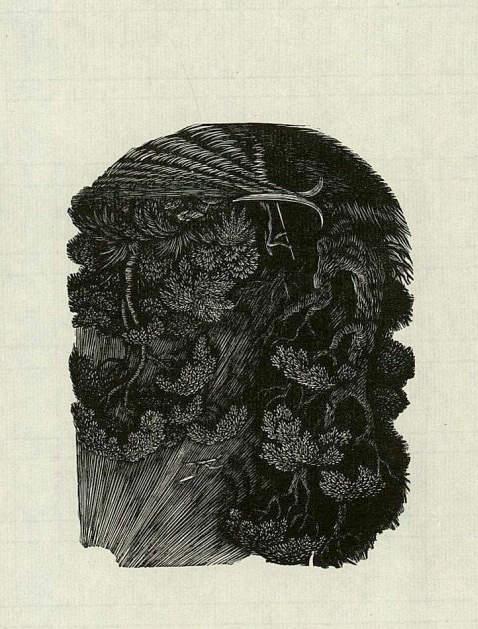 Edgar Allen Poe - Schatten. 1987