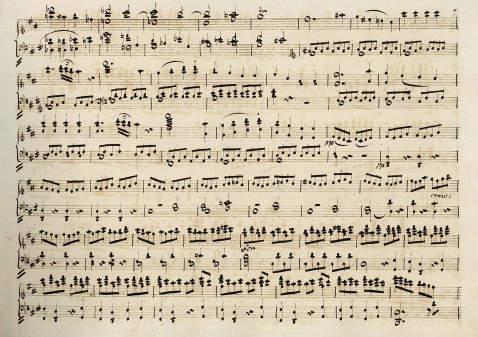 Wolfgang Amadeus Mozart - Hochzeit des Fiagaro