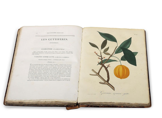 Joseph Roques - Phytographie médicale. 2 Bde. 1821.