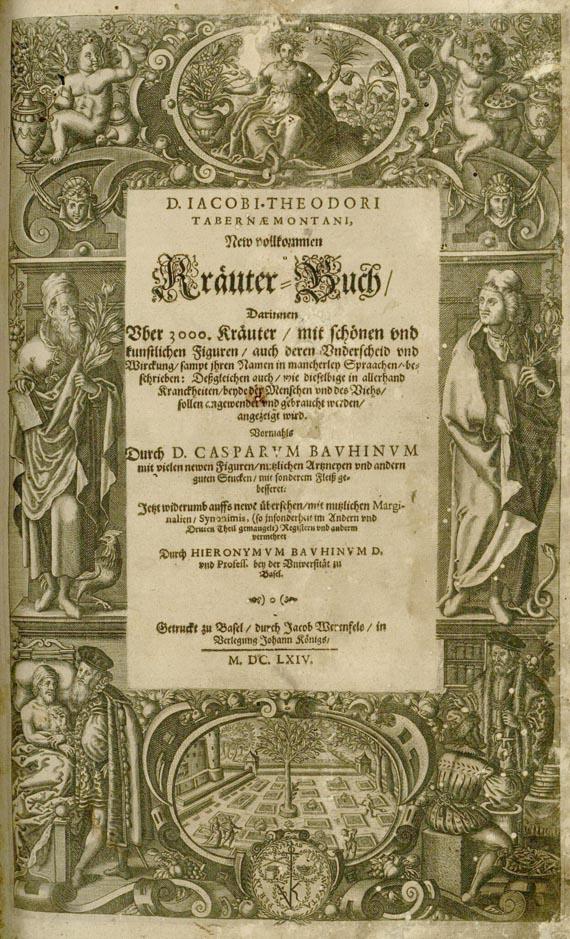 Jacobus Theodorus Tabernaemontanus - New Kräuterbuch. 1664