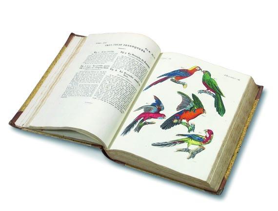 Friedrich Johann Justin Bertuch - Bilderbuch für Kinder. 36 Bde. + 1 Beig. 1792