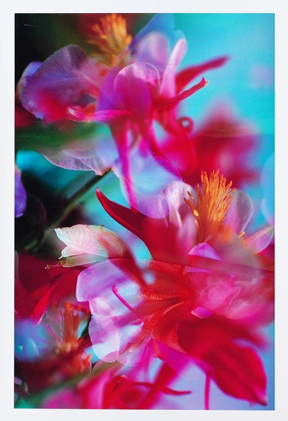 Peter Fischli & David Weiss - Flowers