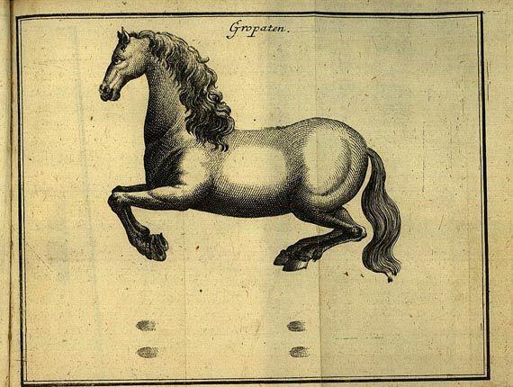 Wolfgang Ernst von Berga - Reit-Kunst. 1725