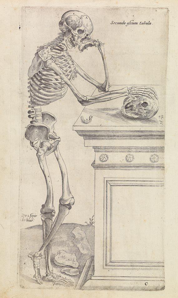 Andreas Vesalius - Anatomia. 1617