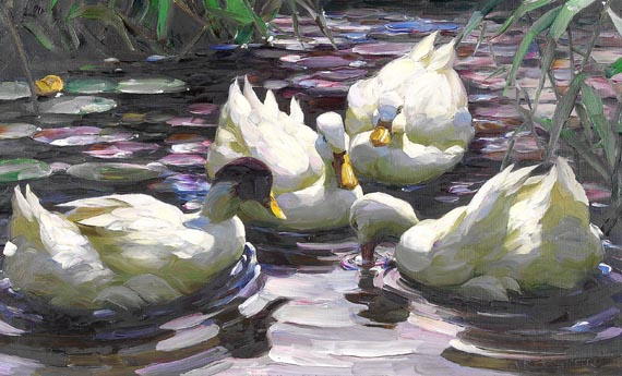 Koester - Vier schwimmende Enten im Teich