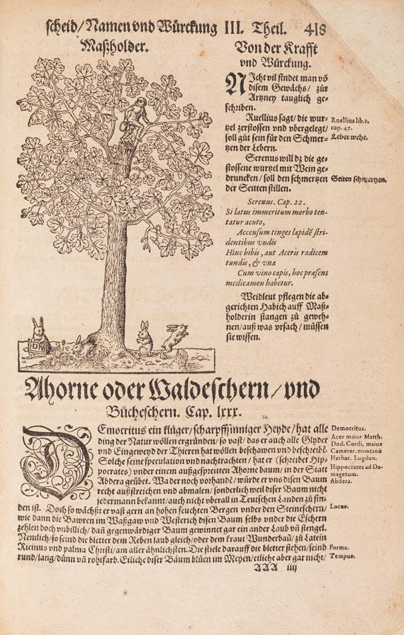 Hieronymus Bock - Kreutterbuch, 1595