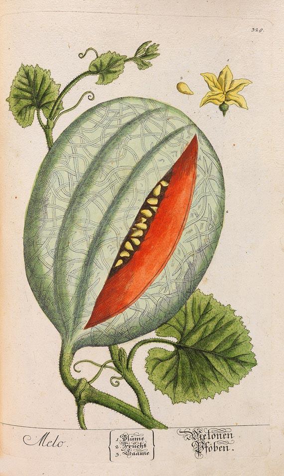 Elisabeth Blackwell - Kräuterbuch (1750-1765)