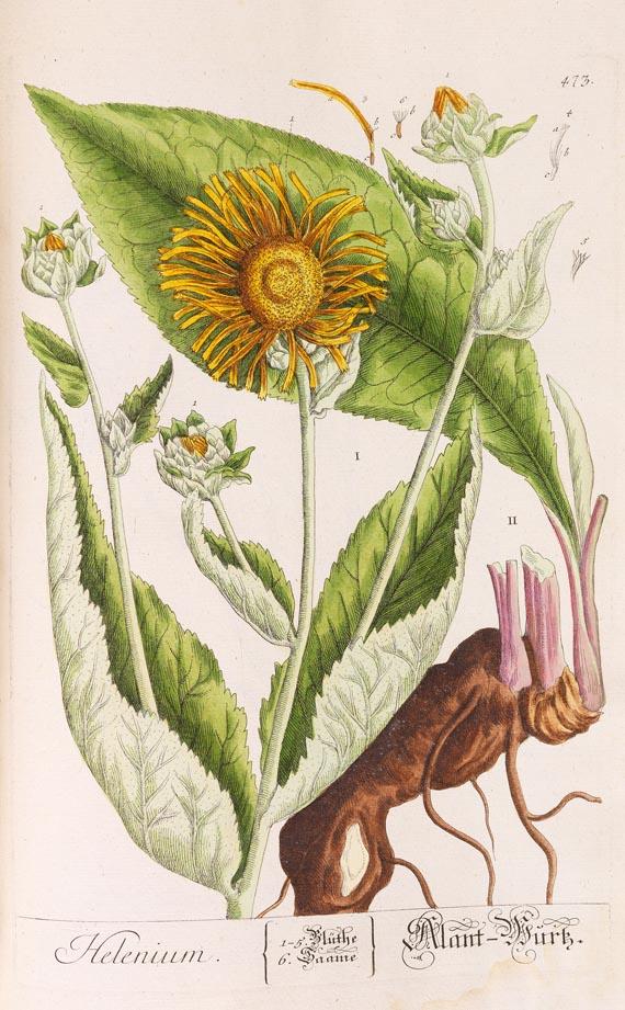 Elisabeth Blackwell - Herbarium. 5. Bd. (1765)