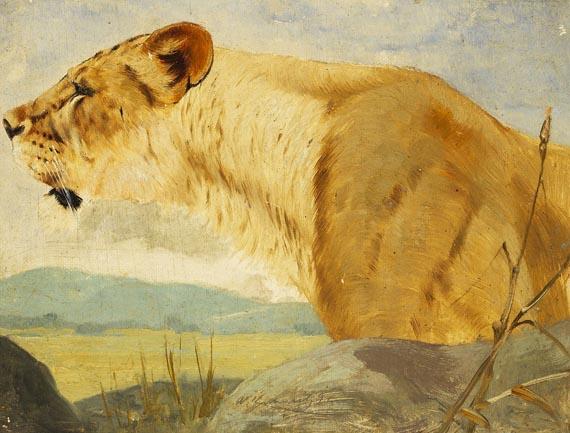 Friedrich Wilhelm Kuhnert - Kopf einer Löwin