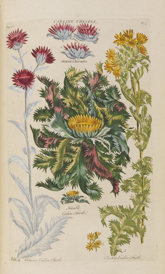 John Hill - Vegetable System. 13 Bde. 1775