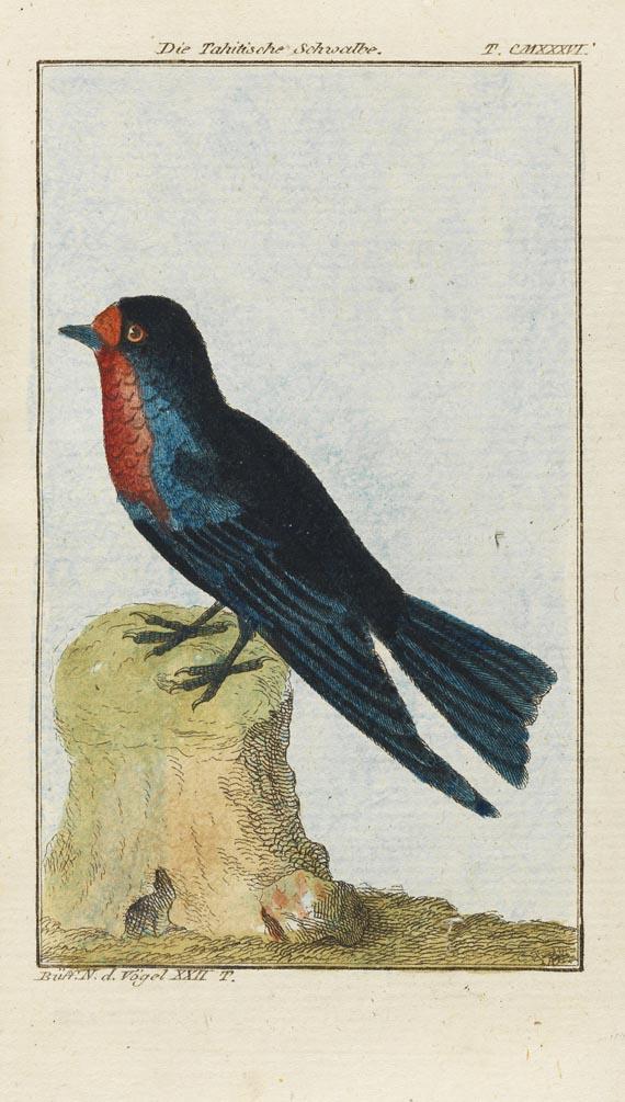 Georges Louis Leclerc Comte de Buffon - Allgemeine Naturgeschichte (vierfüß. Tiere, Vögel). Zus. 36 Bde. d. Reihe. 1784-96.