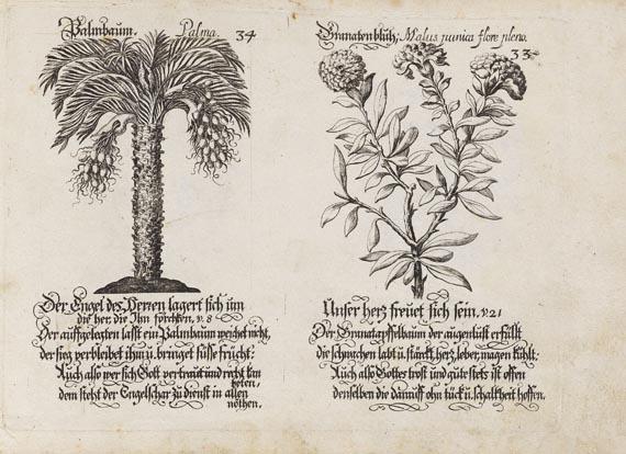 Wolf Helmhard von Hohberg - Emblematische Psalmen-Lust. ca. 1710