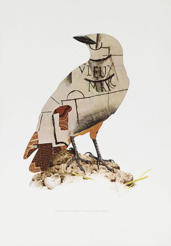 vögel in berlin