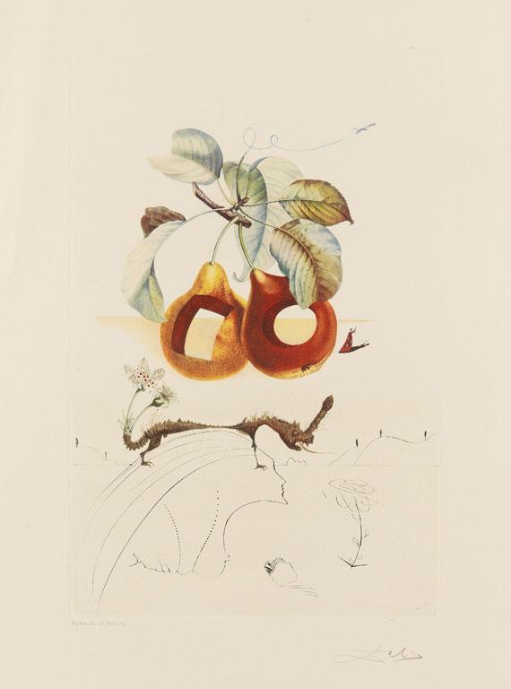 Salvador Dalí - Fruits troués