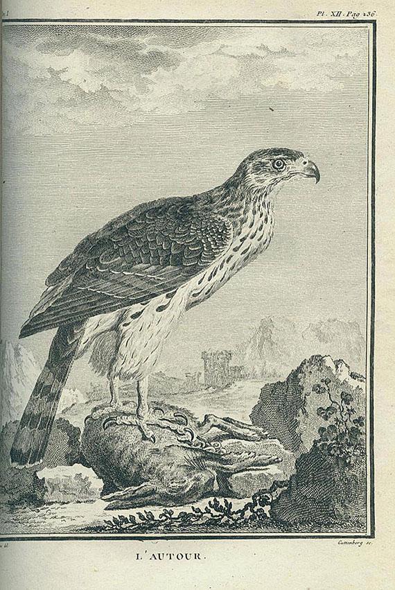 Buffon, G. L. L. de - Histoire naturelle des oiseaux. 1770-79. 5 Bde.