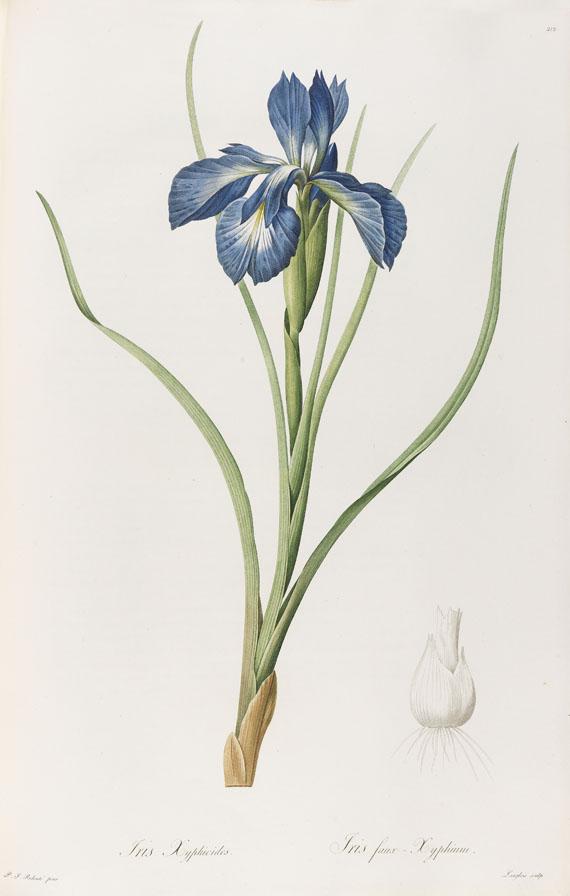 Pierre Joseph Redouté - Liliacées. 8 Bde. 1802-16. -
