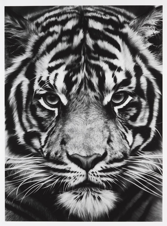 Robert Longo - Tiger