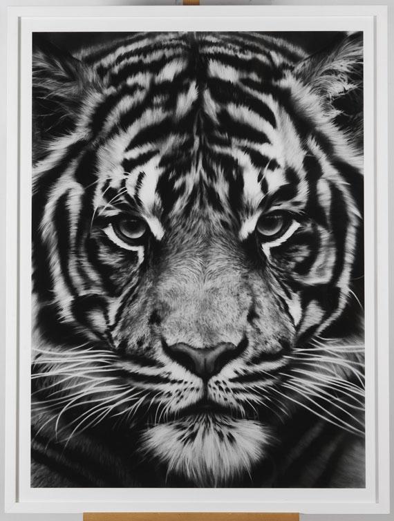 Robert Longo - Tiger - Rahmenbild