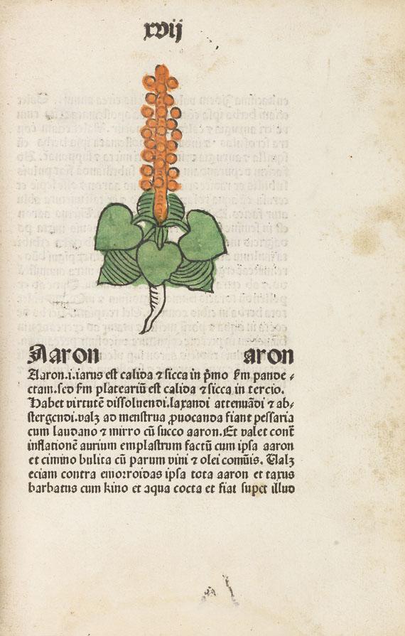 - Herbarius Patavie. 1485.