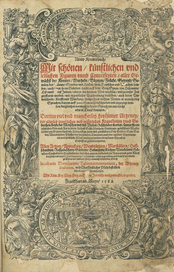 Jacobus Theodorus Tabernaemontanus - Neuw Kreuterbuch. 1588.