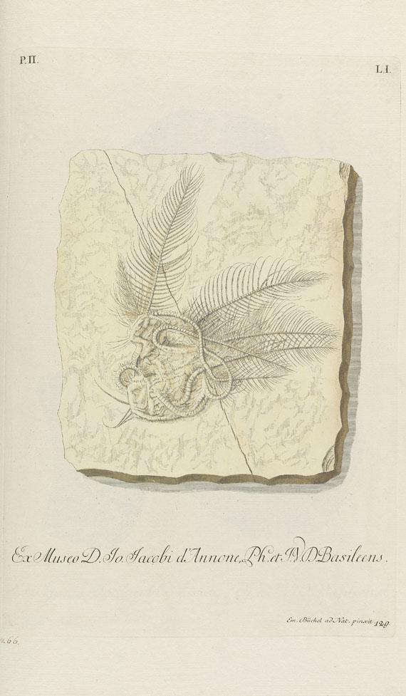 Georg W. Knorr - Recueil des monumens des catastrophes. 4 Bde. 1768-1778