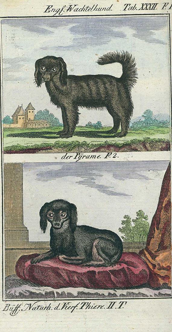 Georges Louis Lerclerc Buffon - Naturgeschichte. 12 Bde. 1785-90