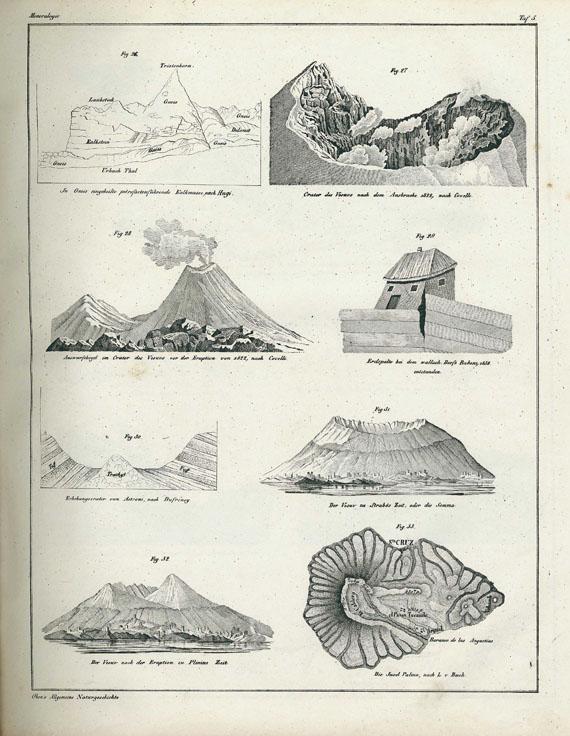 Lorenz Oken - Abbildungen Naturgeschichte. 1843