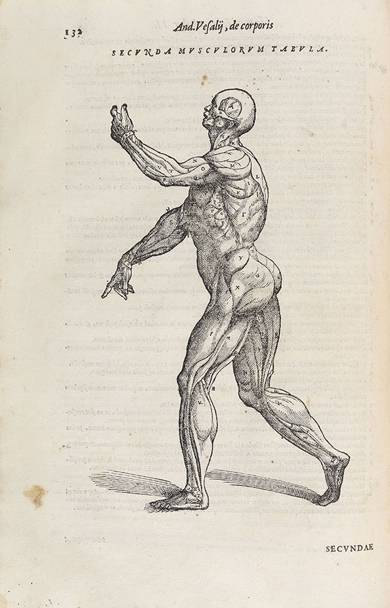 Andreas Vesalius - De humani corporis fabrica. 1568