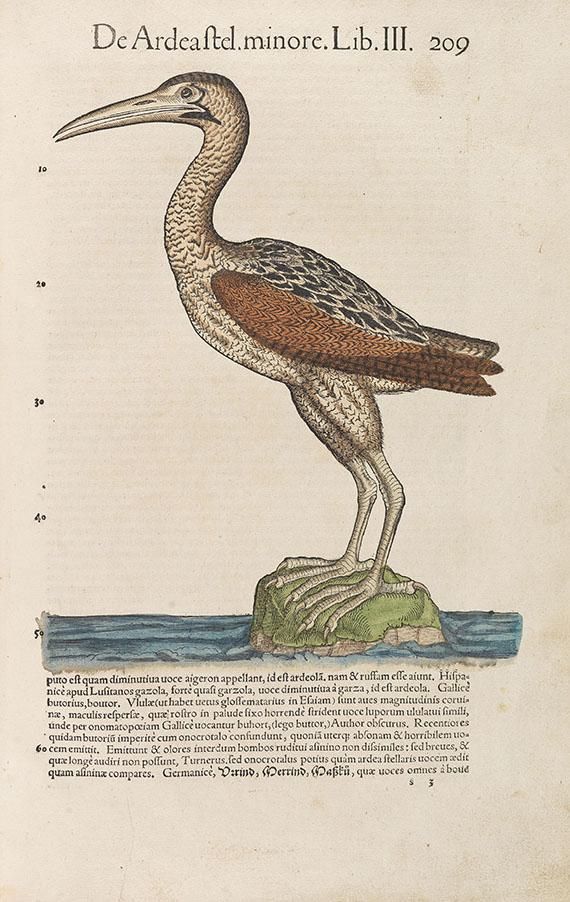 Conrad Gesner - Historiae animalium. 1555
