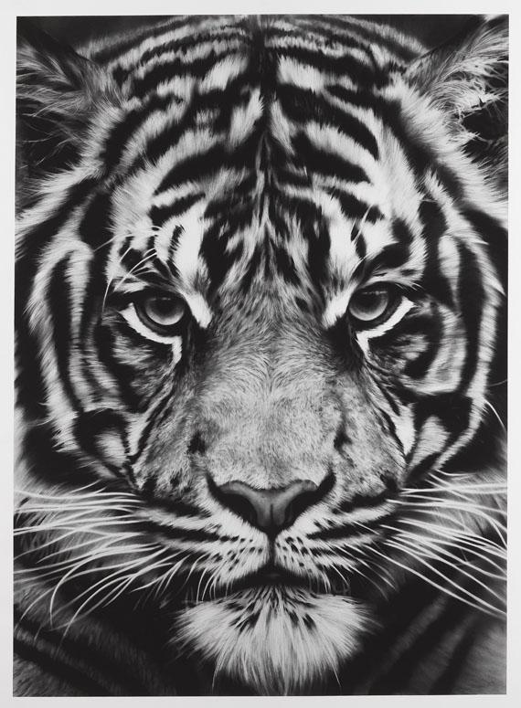 Robert Longo - Ohne Titel (Tiger)