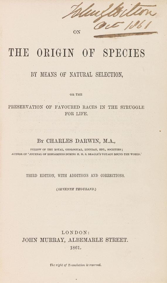 Accounting Jobs In Darwin