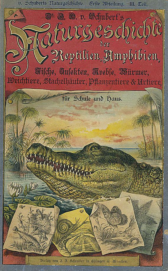 Gotthilf Heinr. von Schubert - Naturgeschichte. Um 1890. 3 Bde.