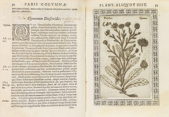 Fabius Columna - Phytobasanos sive Plantarum. 1592.