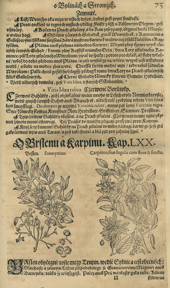 Pietro Andrea Mattioli - Herbar aneb Bylinar. 5 Bde. 1596