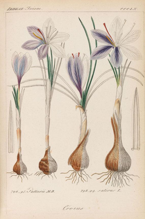 Heinrich Gottlieb Ludwig Reichenbach - Deutschlands Flora. 11 Bde. 1839-1867