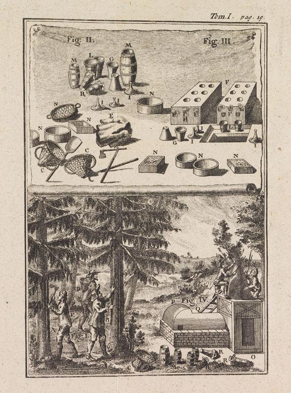 Henri Louis Duhamel du Monceau - Abhandlung von Bäumen. 1762-63. 3 Tle. in 1 Bd.