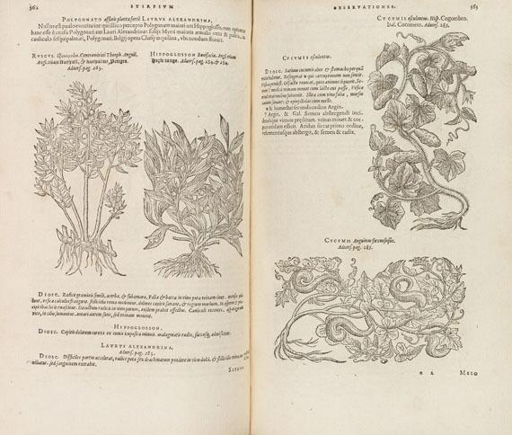 Matthias de Lobel - Plantarum seu stirpium historia. 2 Tle. in 1 Bde. 1576