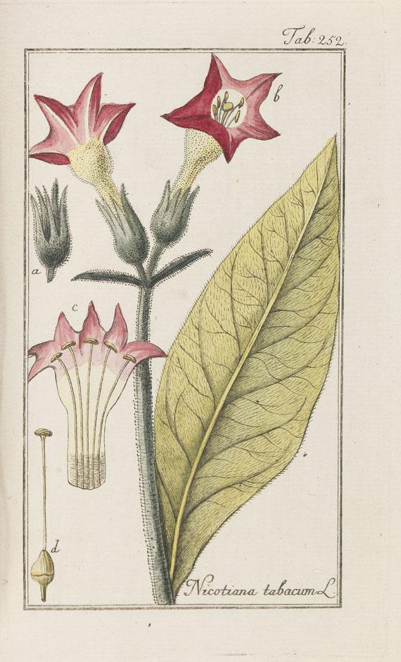 Johannes Zorn - Abbildungen von Arzneygewächsen. 3 Bde. 1784-90