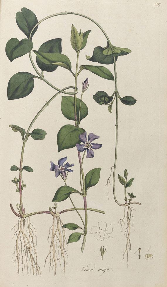 William Curtis - Flora Londinensis. 2 Bde. 1775-1798.