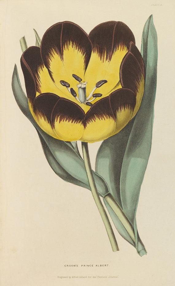 British Florist - British Florist. 6 Bde.