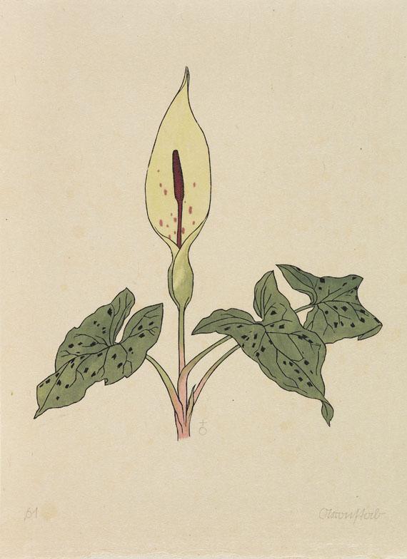 Rudolf Koch - Blumenbuch