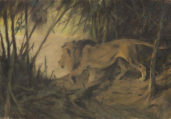 Wilhelm Kuhnert - Löwe, zum Flusse ziehend