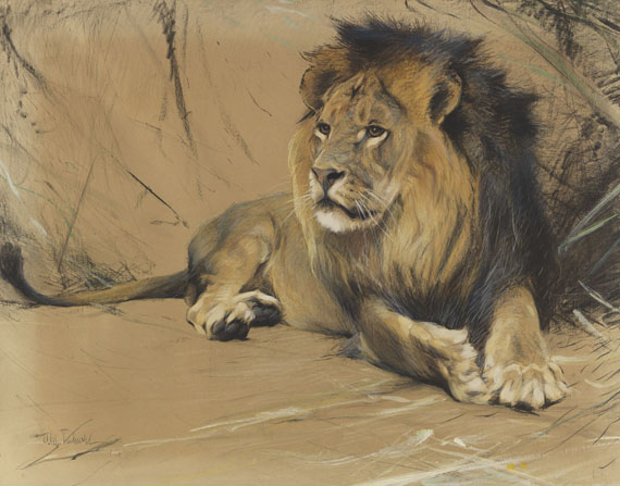 Wilhelm Kuhnert - Liegender Löwe