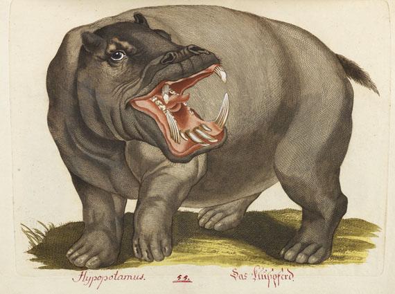 Joachim J. N. Spalowsky - Beytrag zur Naturgeschichte der vierfüssigen Thiere. 2 Bde. -
