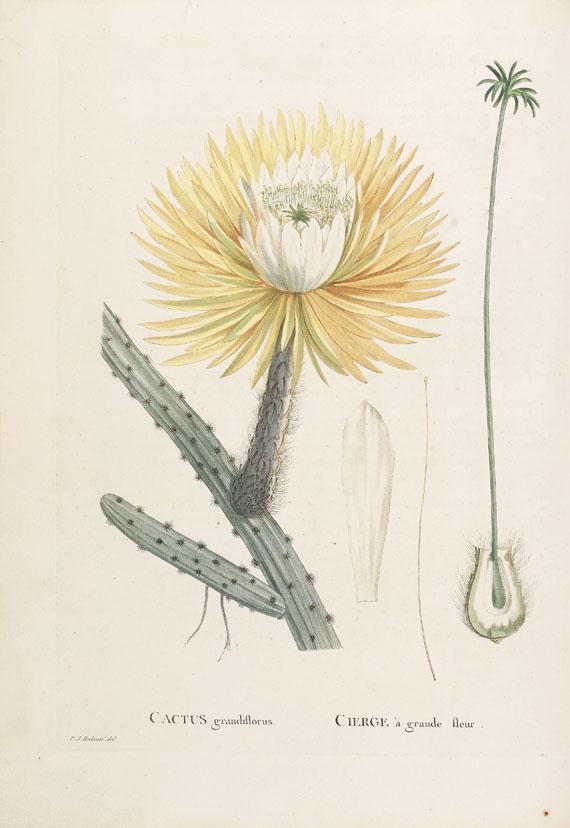 Pierre Joseph Redouté - Candolle, Histoire des Plantes grasses. 2 Bde.