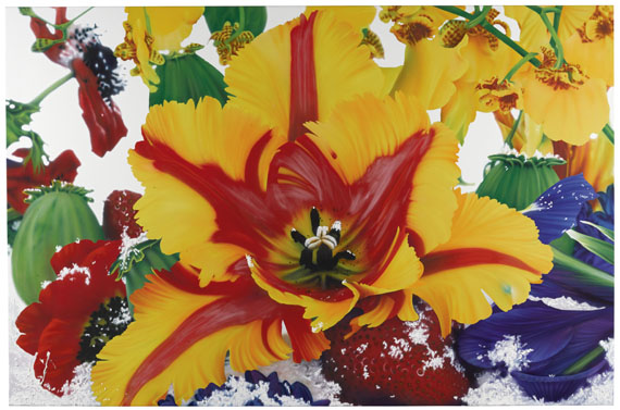 Marc Quinn - The Extra Tropical Troposphere