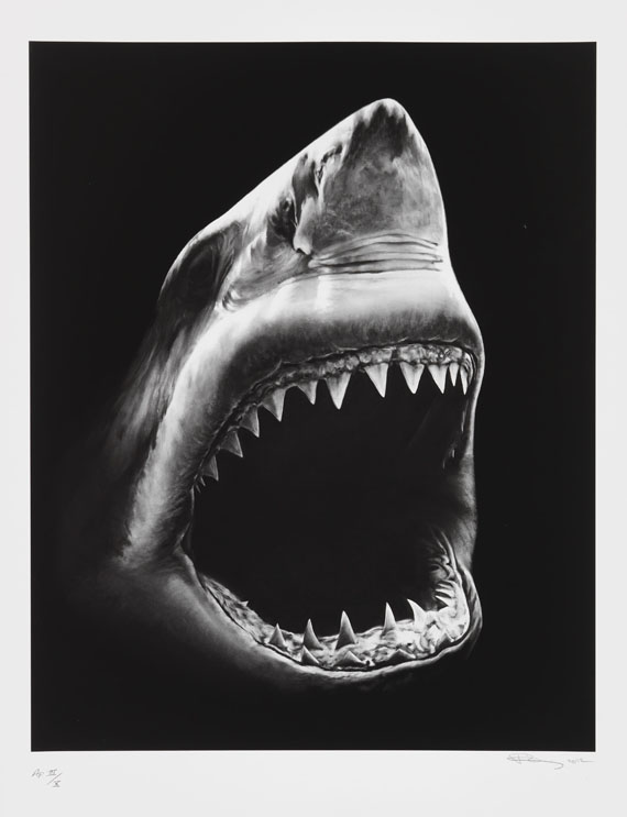 Robert Longo - Shark 5