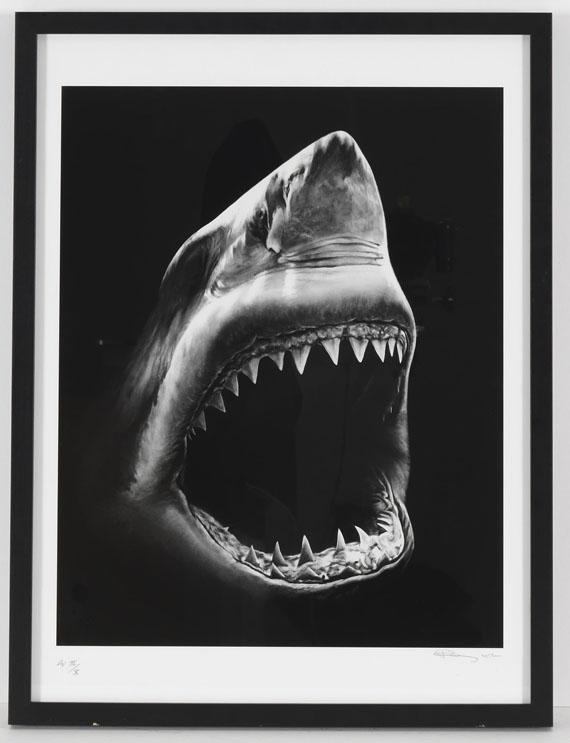 Robert Longo - Shark 5 - Rahmenbild