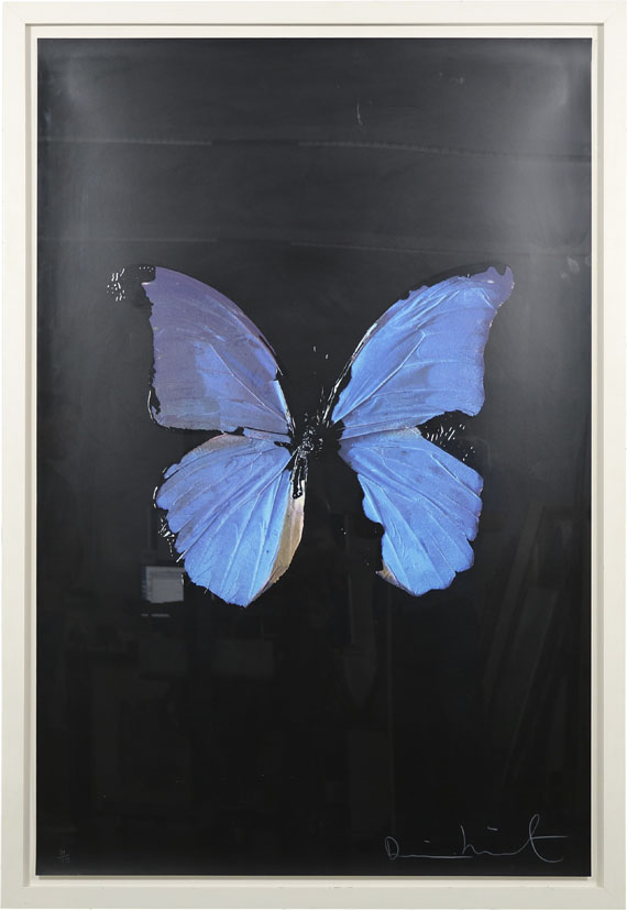 Damien Hirst - The Soul on Jacob´s Ladder - Frame image