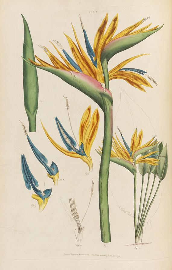 John Miller - Illustratio systematis sexualis Linnaei, 2 Bde. 1770-1780. -